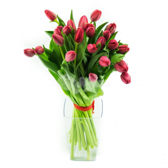 Букет из 25 розовых Тюльпанов